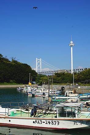 沙弥港の午後