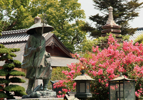 馬頭観音が本尊である本山寺にはサルスベリが咲く