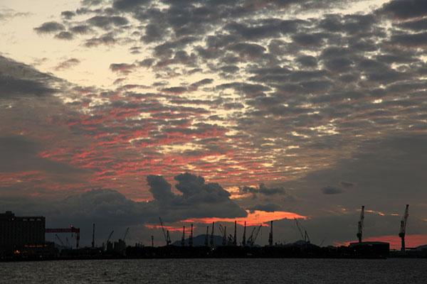 日没前後潮満ち来る時にボラが乗ってくる