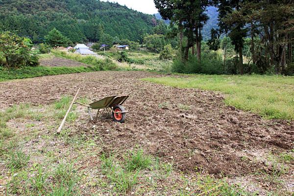 琴南 涼しくなり荒れた畑を耕すなり