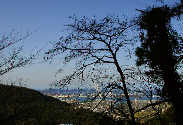 木の葉も落ちて煙り一筋冬の風・・