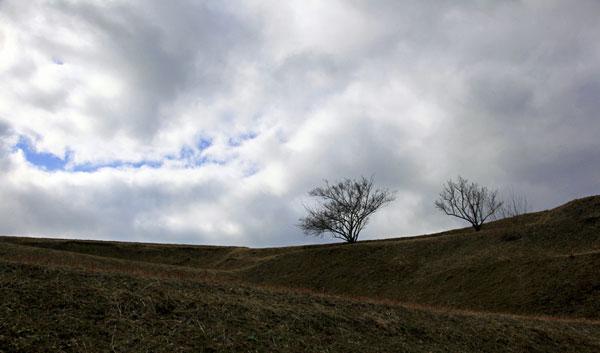 広いこの田んぼにもの少しの春のきざしが ・・