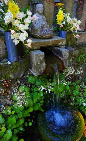 讃岐の渇水期でもここだけは枯れることなく湧き出ている