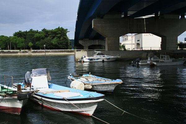 明け易し 漁港の夏の波の音