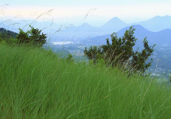 城山山頂は朝方ひんやり 秋の風