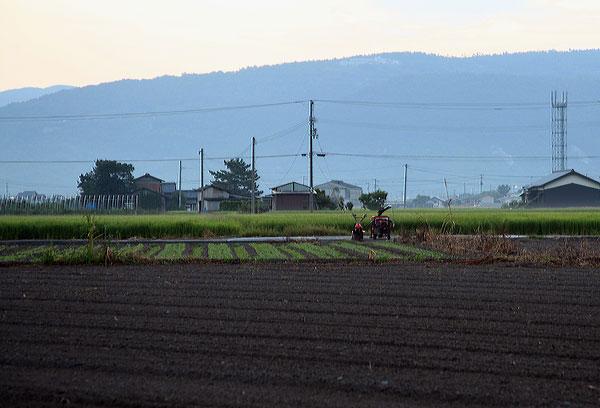 日の出前使い残った農機具の周りには 虫の声・・