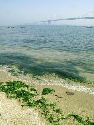 ナカンダ浜ゆったりと潮の満ち引き初夏の浜・・