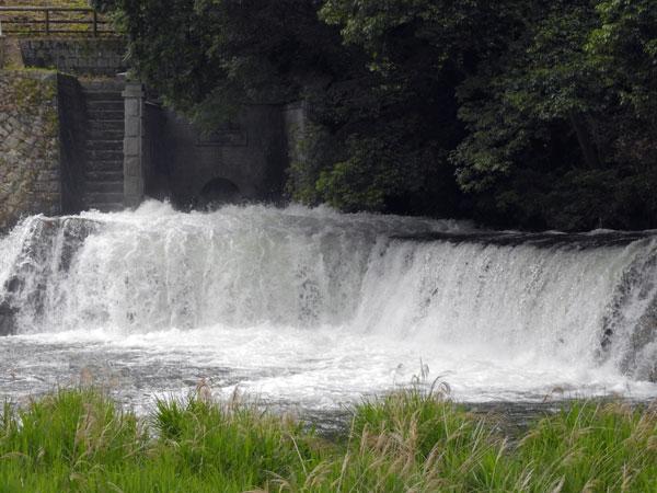 毎年6月15日満濃池ゆる抜き  田植え水となる・・