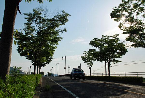 梅雨の晴れ間に ・・綾川の街灯 ・・
