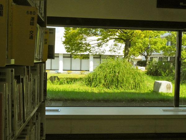 図書館の中庭の萩 眼にやさしい ・・
