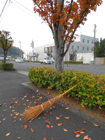 朝刊を取りに来て街路樹の落葉一ケ所に集まりて・・